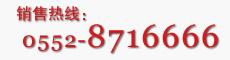 销售热线电话:0552-8716666